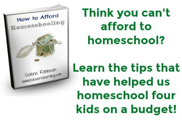 How to Afford Homeschooling eBook Download