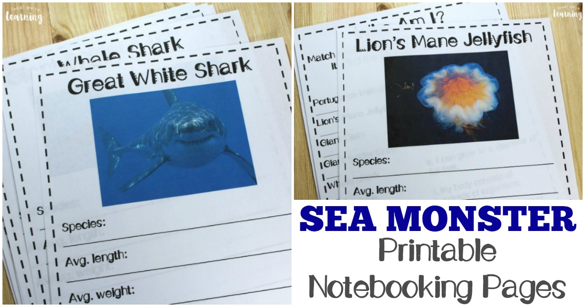 Printable Ocean Creature Notebooking Pages for Kids