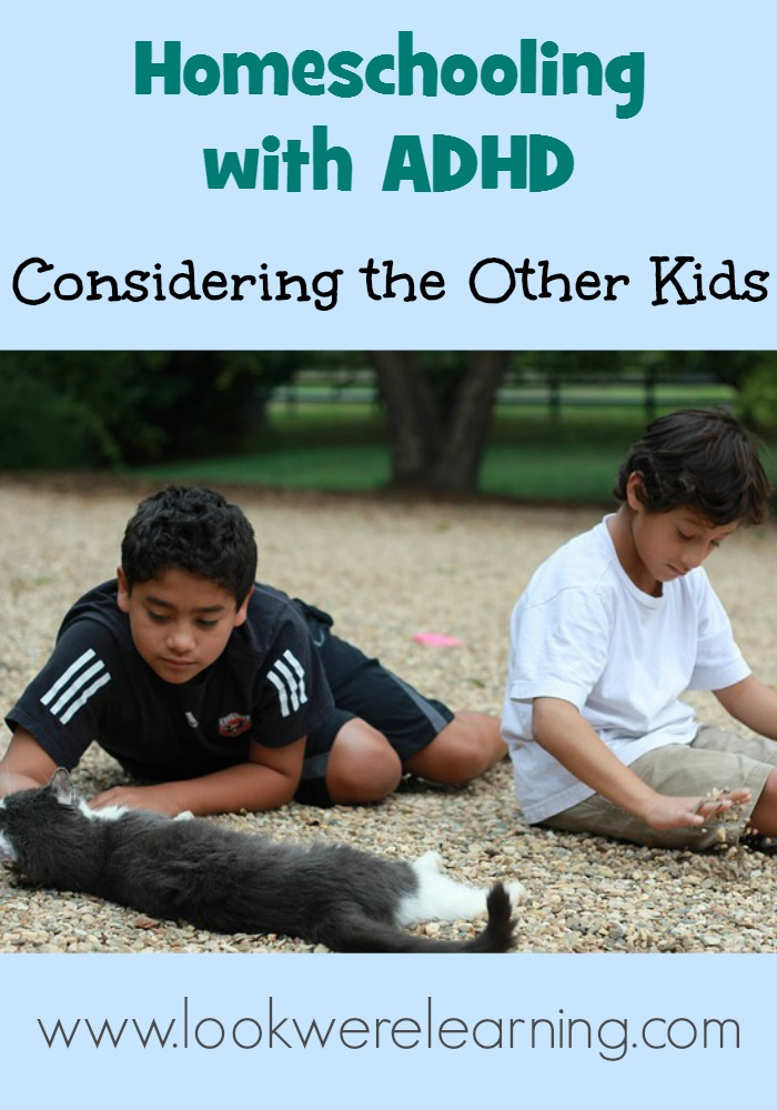 Homeschooling with ADHD: Considering the Other Kids - Look! We're Learning!