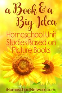 Summer Book and Big Idea