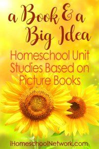 Summer Book and Big Idea