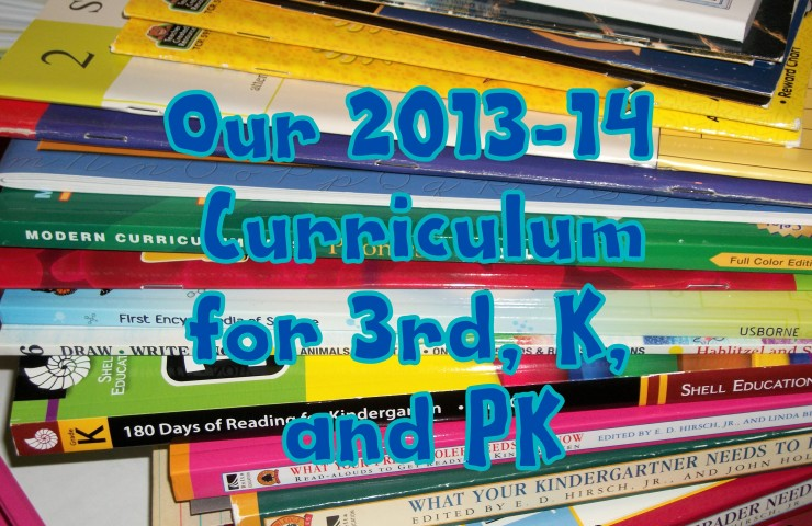 Our 2013-14 Homeschool Curriculum