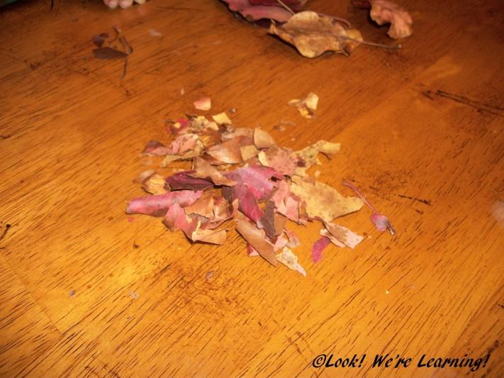 DIY Fall Leaf Snow Globe Craft - Look! We're Learning!