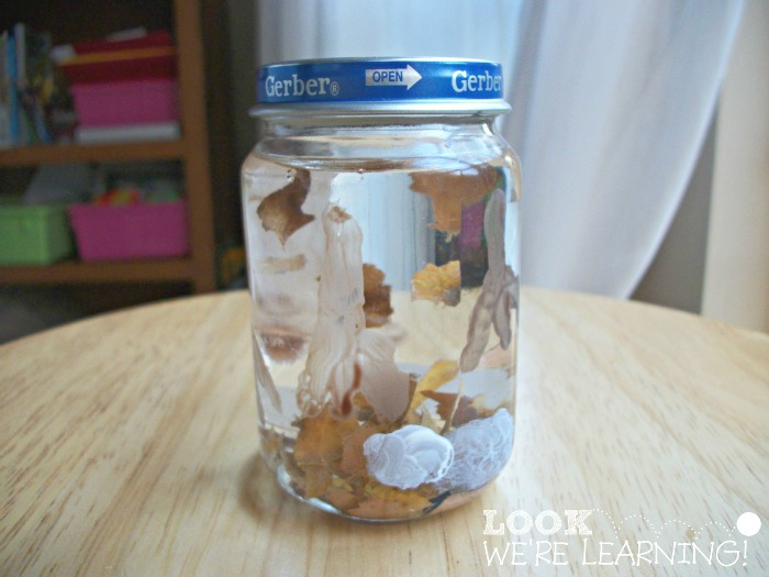 Fall Leaf Snow Globe