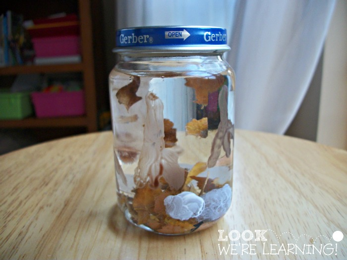 Fall Leaf Snow Globe - Look! We're Learning!