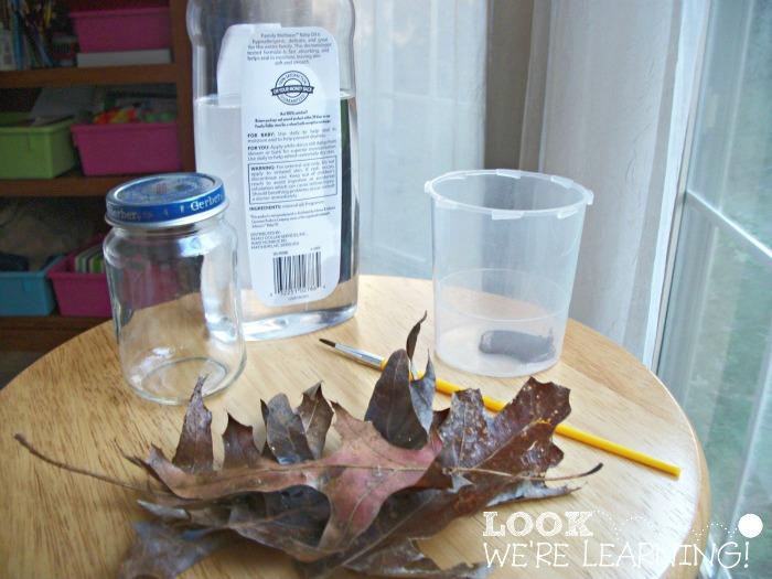 Fall Snow Globe Materials