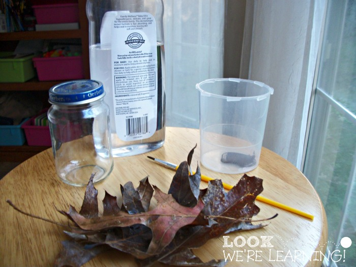 Fall Snow Globe Materials @ Look! We're Learning!