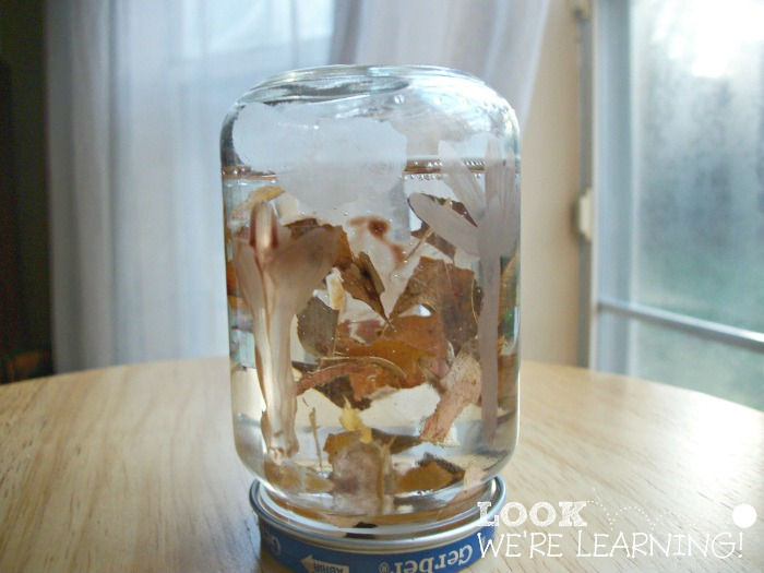 Kids Fall Snow Globe Craft