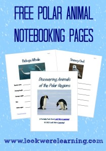 Free Polar Animal Notebooking Pages - Look! We're Learning!