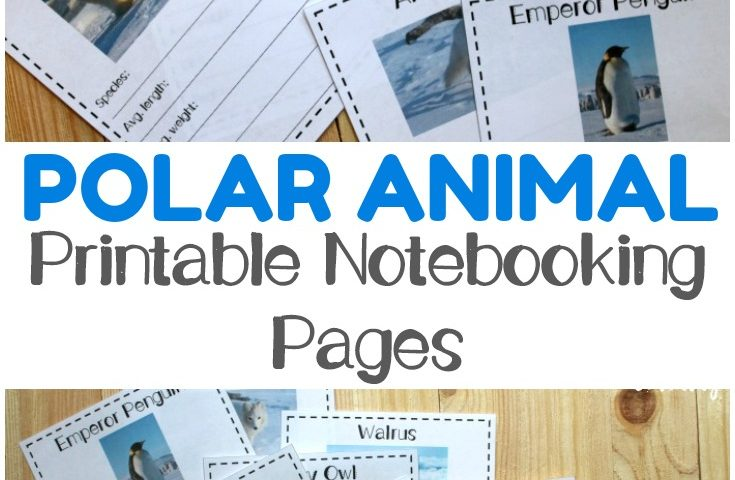 Free Polar Animal Notebooking Pages
