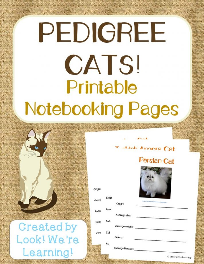 Pedigree Cat Notebooking Pages