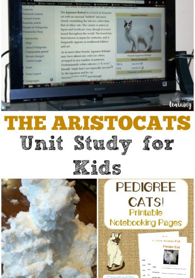 Try this The Aristocats unit study to make a classic kids' movie into a super fun lesson!