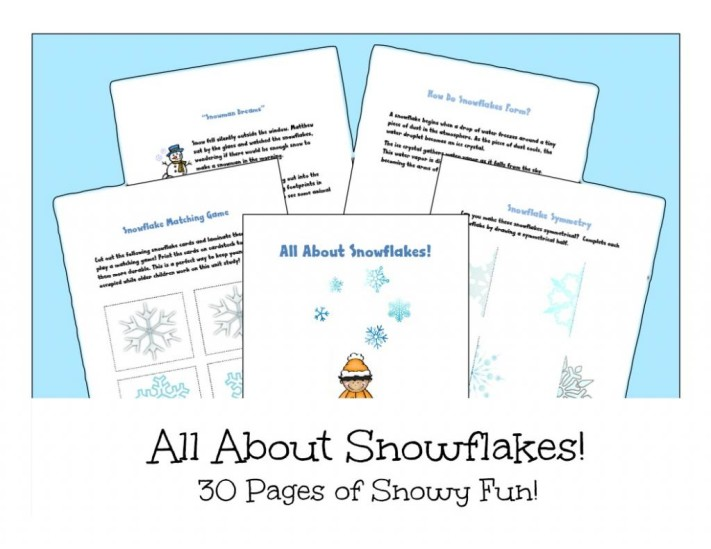 All About Snowflakes Unit Study - Look! We're Learning!