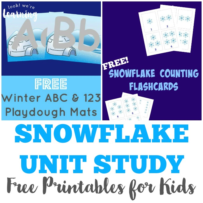 Free Printable Snowflake Unit Study Resources - Look! We're Learning!