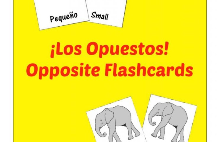 Free Printable Flashcards: Spanish Opposites Flashcards