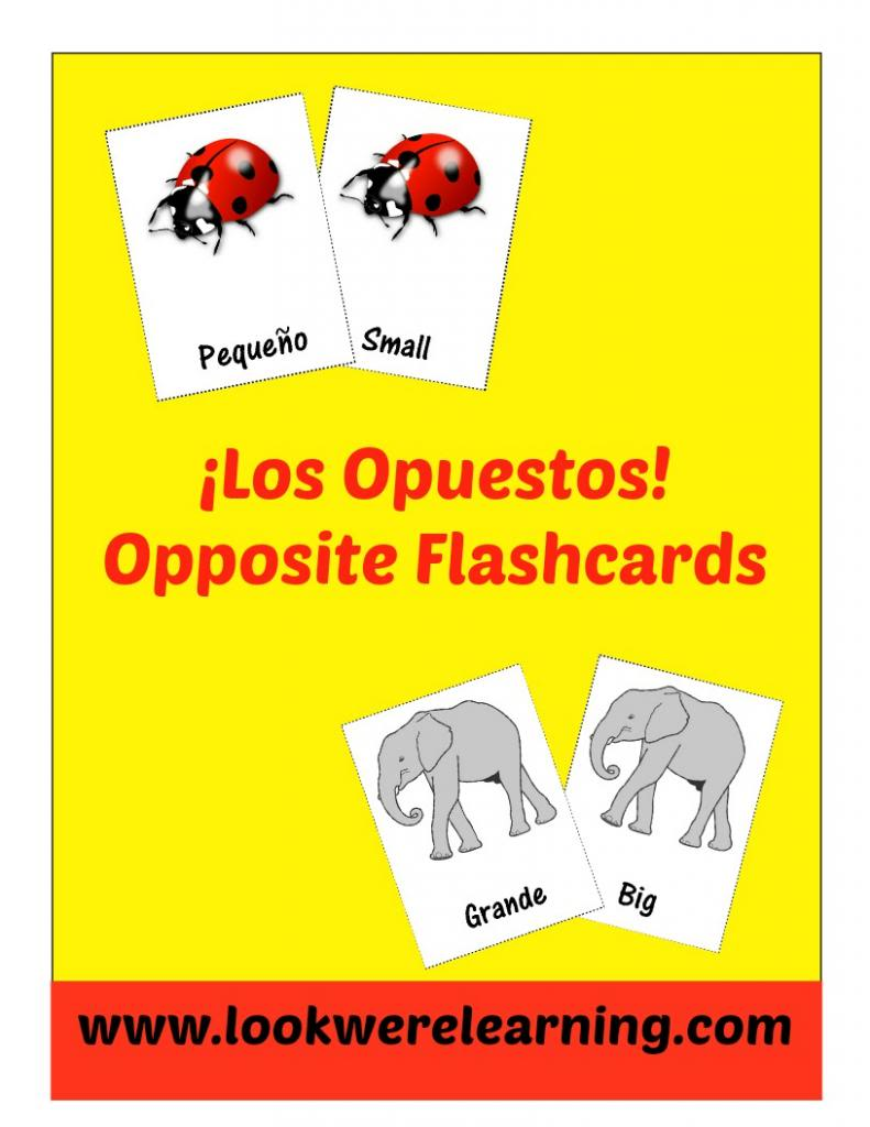 Free Spanish Opposite Word Flashcards - Look! We're Learning!