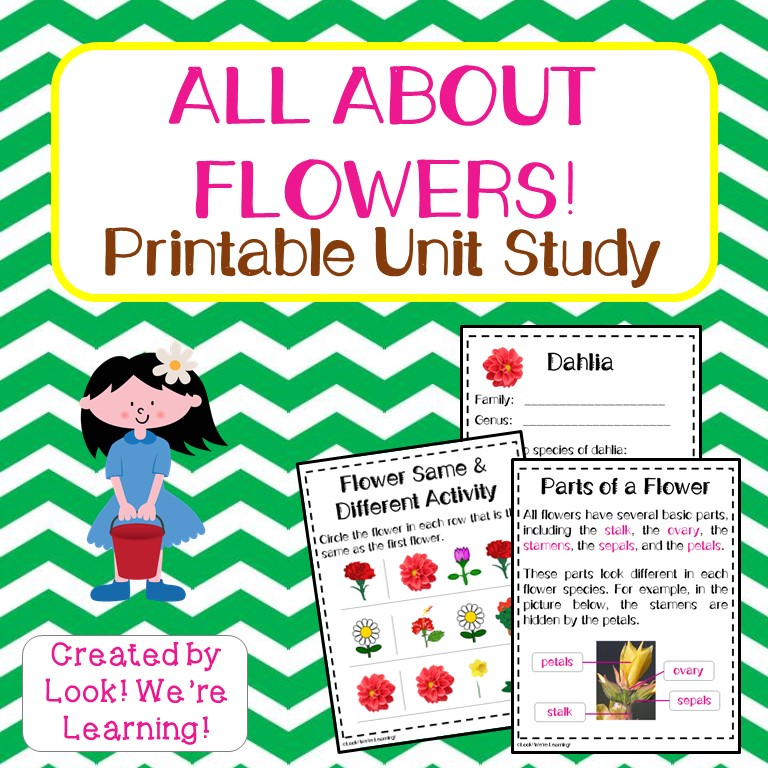 All About Flowers Printable Unit Study