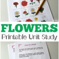 Get to know common flowers - just in time for spring - with this All About Flowers Printable Unit Study for Kids!