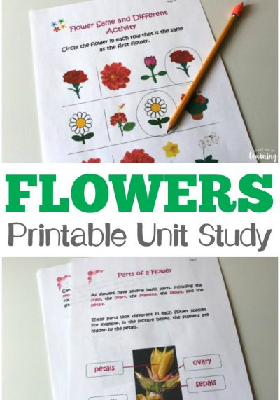 All About Flowers Printable Unit Study: Flower Printables for Kids