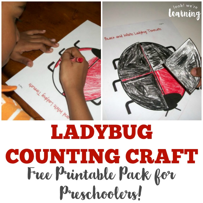 Ladybug Counting Craft for Preschoolers