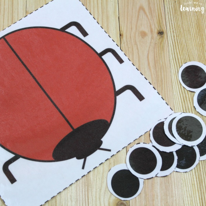Ladybug Counting and Math Activity