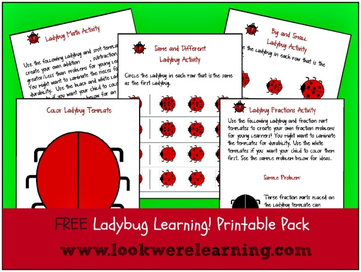 Free The Grouchy Ladybug Printables