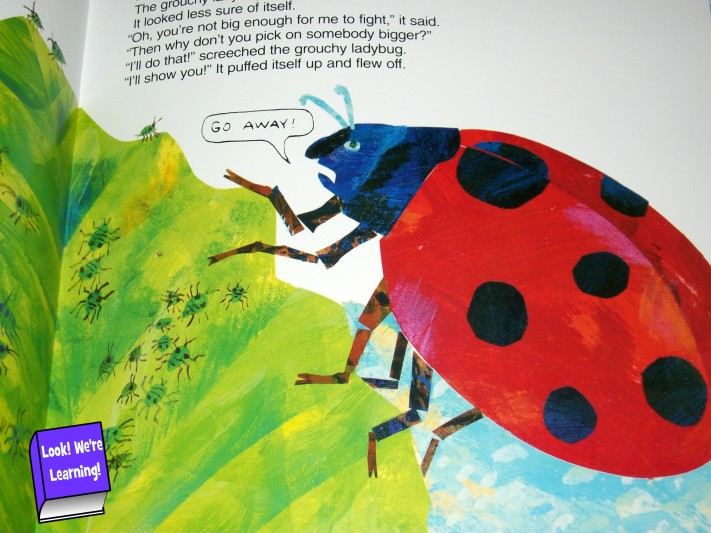 Activities for the Grouchy Ladybug
