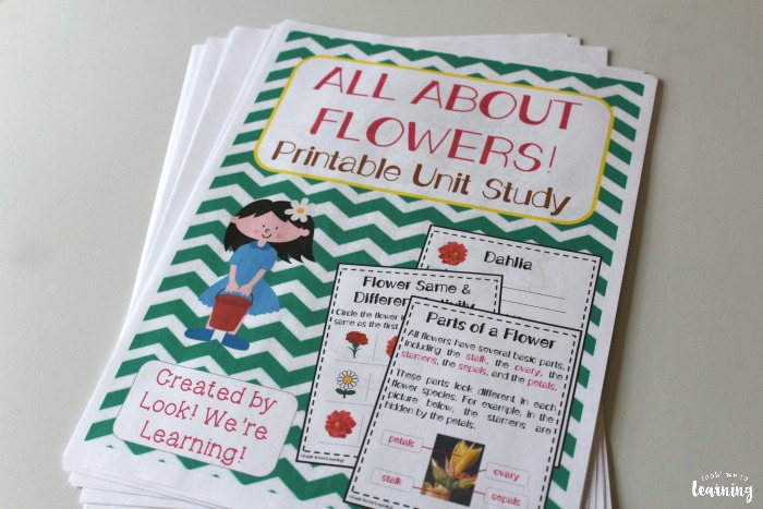 Printable Flowers Unit Study