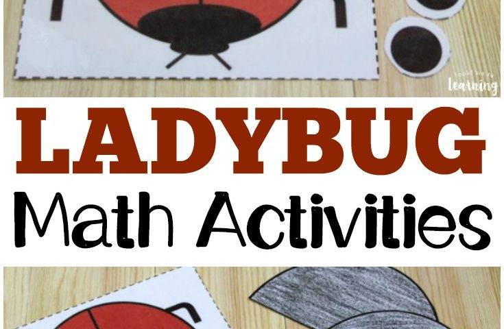 Printable Activities for The Grouchy Ladybug