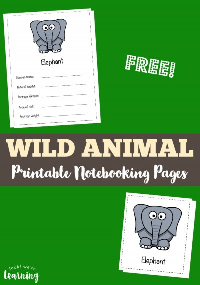 These free wild animal notebooking pages are a perfect complement to the book Polar Bear, Polar Bear, What Do You Hear? by Eric Carle!