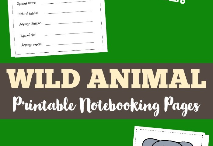 Polar Bear What Do You Hear Printable Animal Notebooking Pages