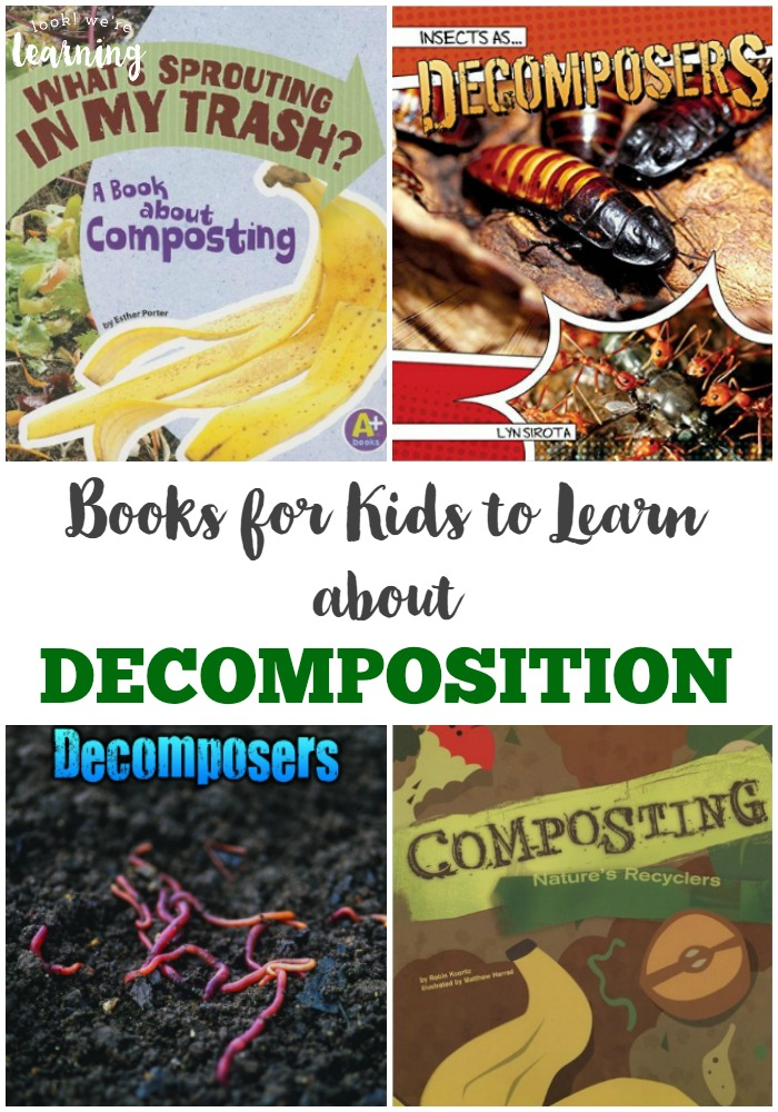 Books about Decomposition for Kids
