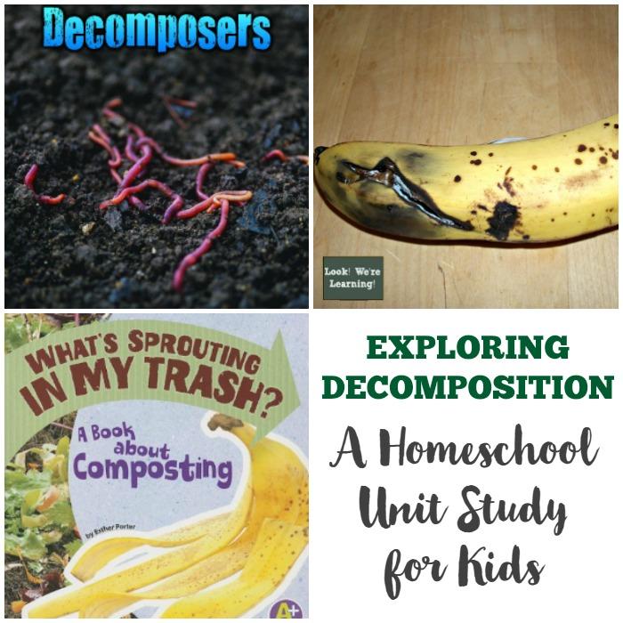 Decomposition Unit Study Lesson Ideas for Kids