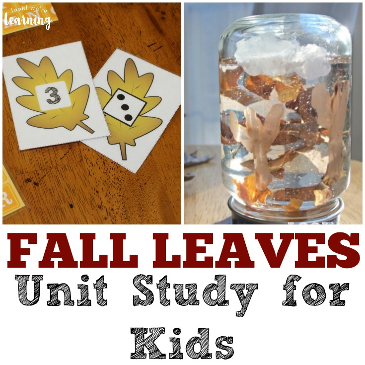 Fall Leaves Unit Study for Kids
