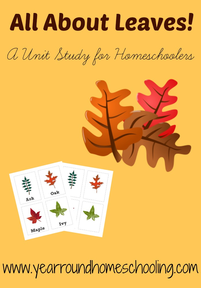 Free Homeschool Unit Studies: Fall Leaves