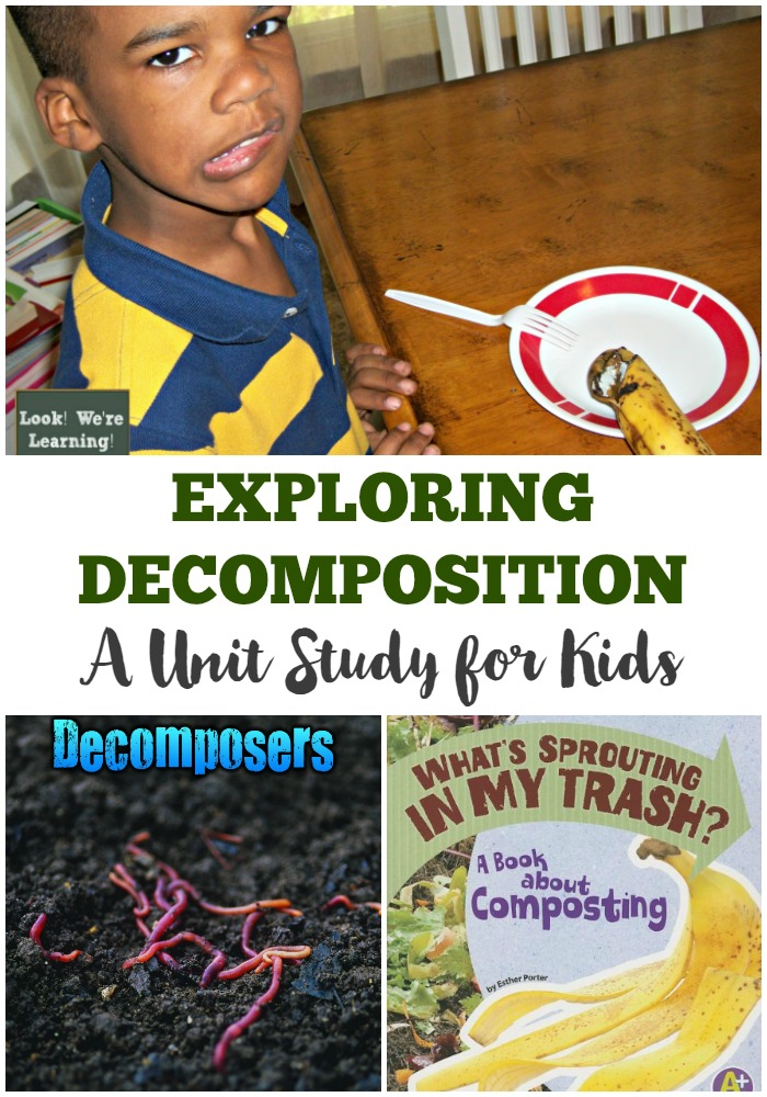 This decomposition unit study gets into the dirty truth about living things!