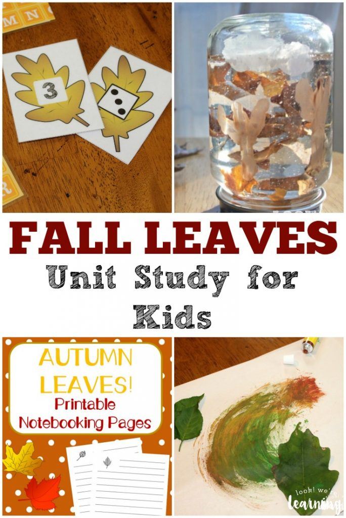 This fall leaves unit study for kids is a great way to study autumn together this year!
