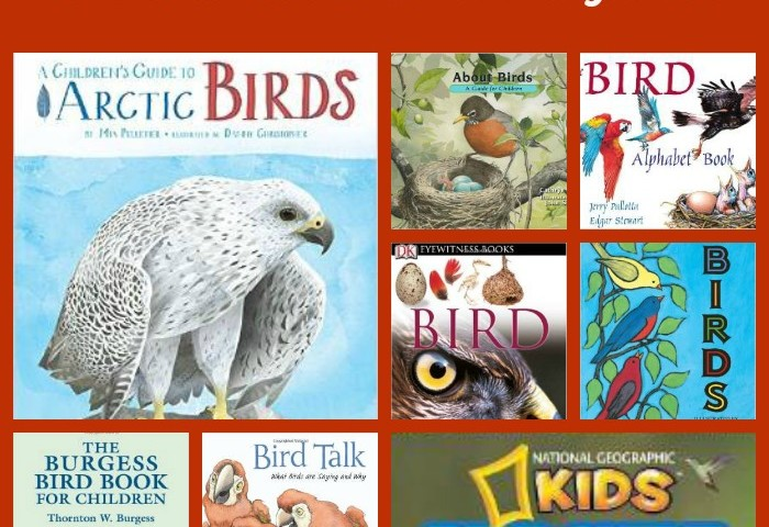 10 Children's Books about Birds
