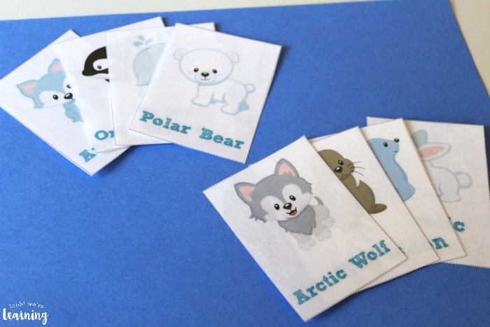 Arctic Animal Printable Flashcards