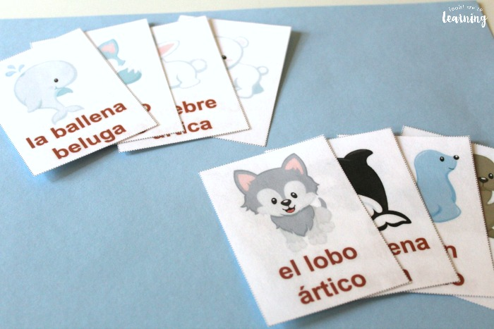 Arctic Animals in Spanish Printable Flashcards