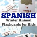 Learn how to pronounce Arctic animal names in Spanish with these Spanish winter animal flashcards!