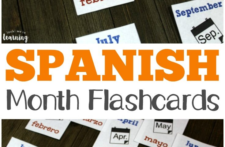 Free Printable Flashcards: Spanish Months of the Year Flashcards