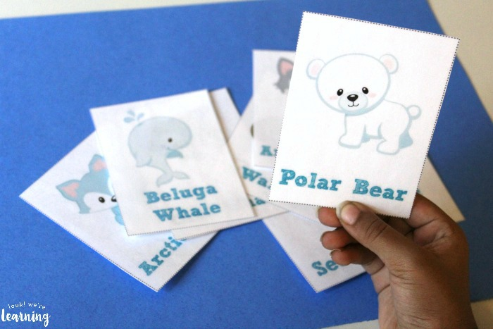 Printable Arctic Animal Flashcards for Kids