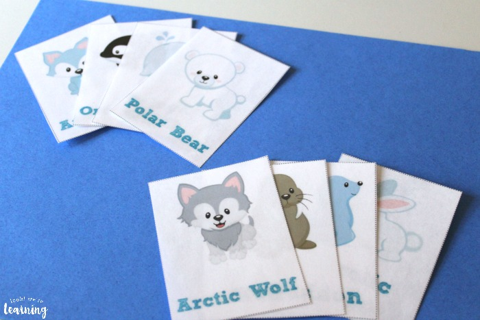 Printable Arctic Animal Flashcards