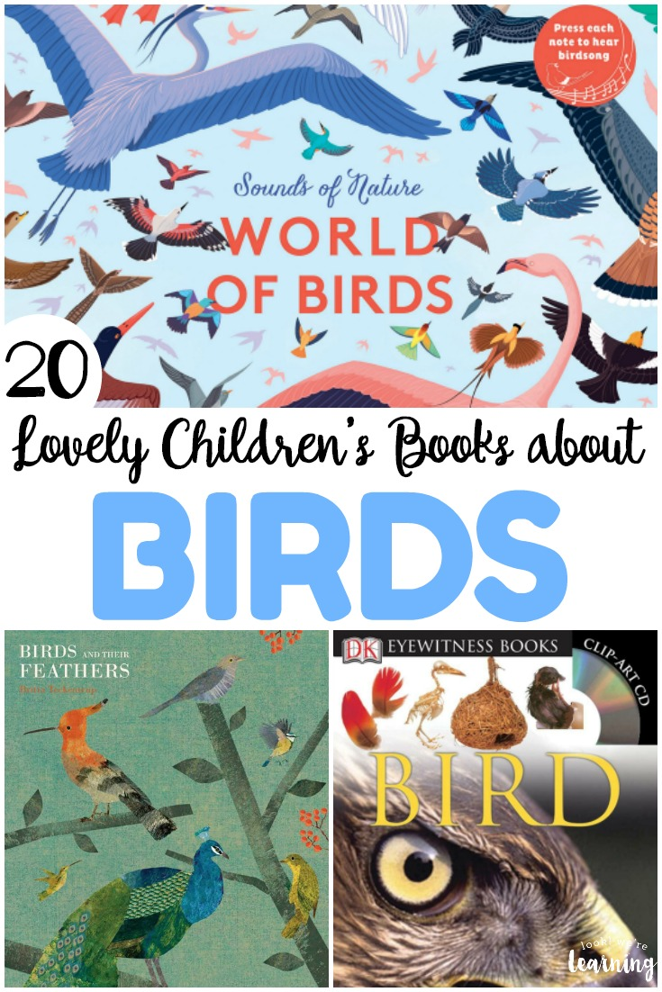 Share some of these lovely children's books about birds with your kids this spring or fall! These are wonderful for learning more about how these incredible creatures live!