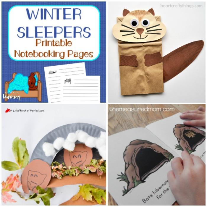 Fun Hibernation Crafts and Activities for Kids
