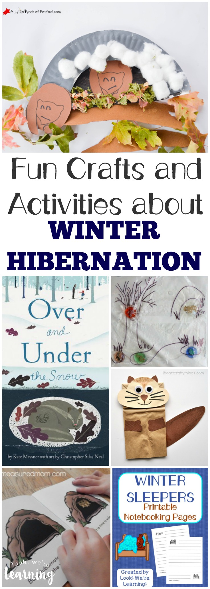 Share the fun hibernation crafts and activities in this hibernation unit study with the kids this winter!