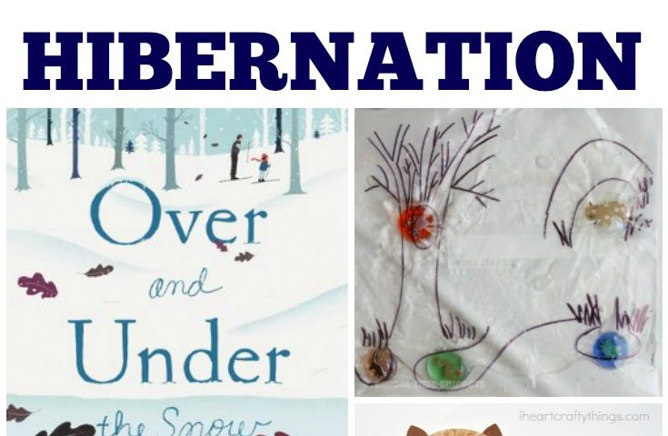 Homeschool Unit Studies: Hibernation Unit Study