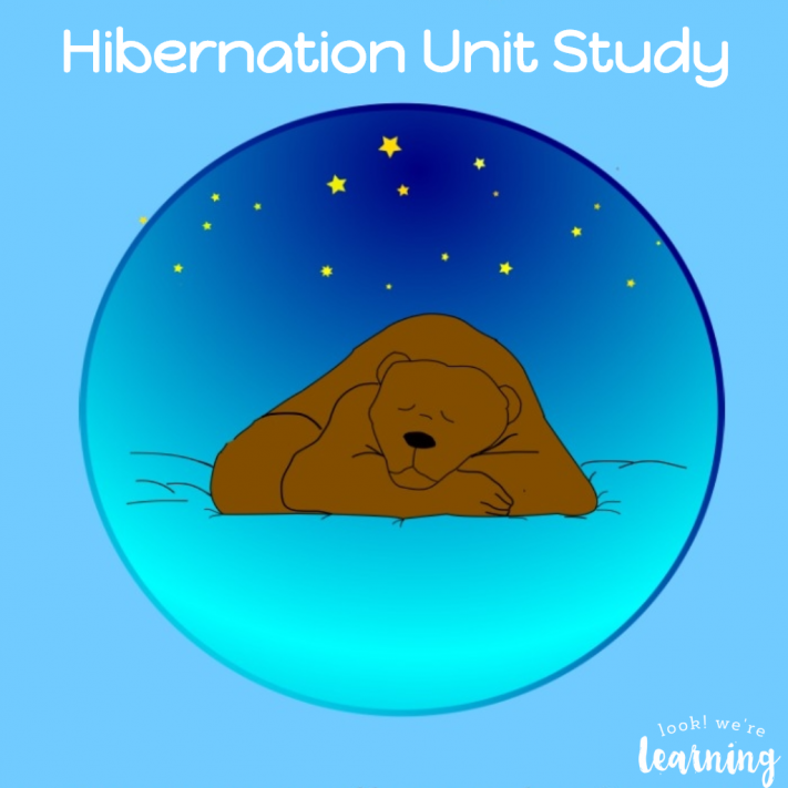 Hibernation Unit for Homeschoolers