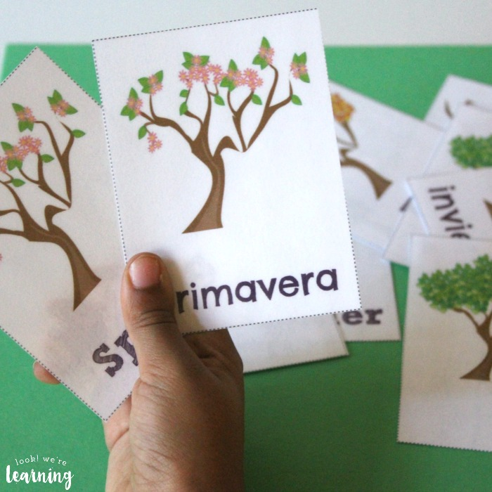 English to Spanish Season Flashcards for Kids